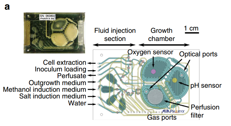 thermally induced bonding of pmma microfludic